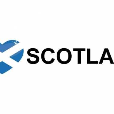 Set van 10x stuks i love scotland vlag sticker 19.6 cm
